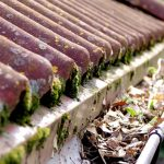 Do My Gutters Need Clearing in Summer?